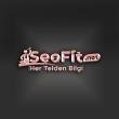Seofit.net Kullanıcı Yorumları